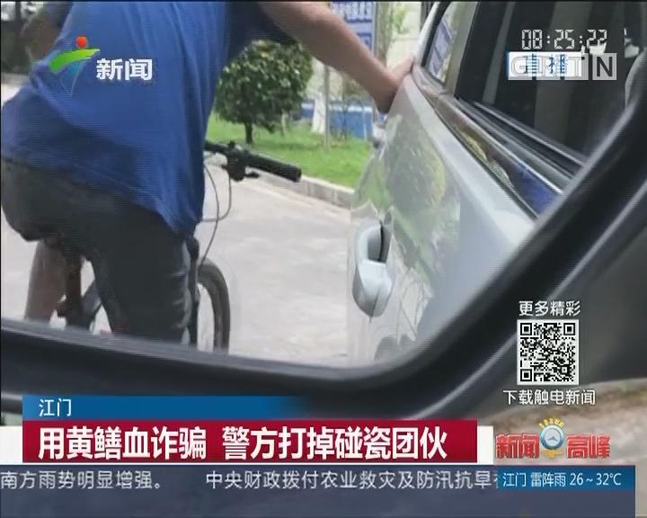 江门:用黄鳝血诈骗 警方打掉碰瓷团伙