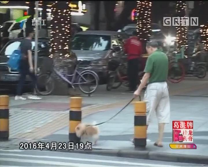 [2017-06-02]法案追踪:遛狗丧命