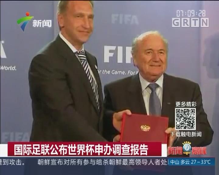 国际足联公布世界杯申办调查报告