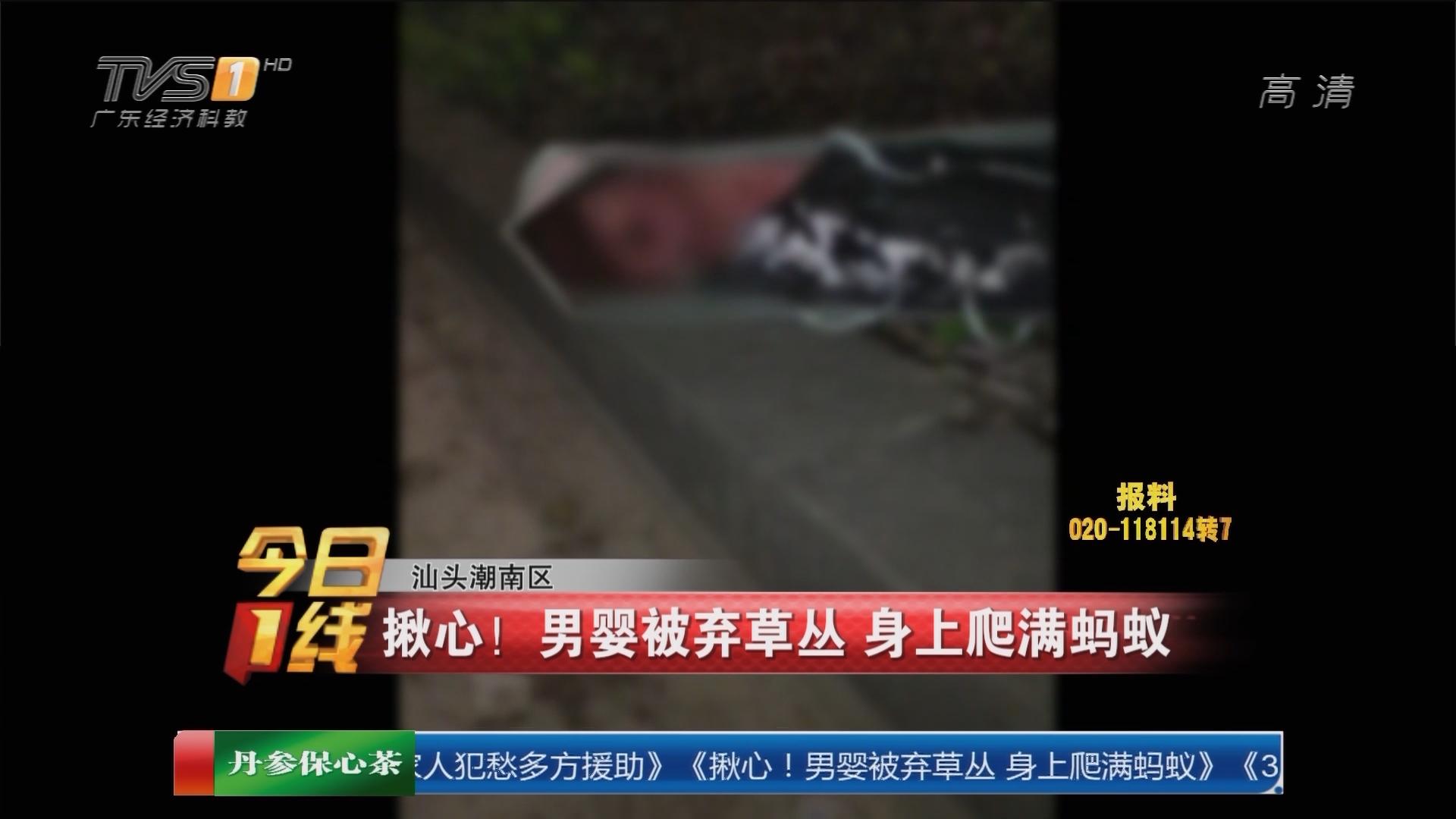 汕头潮南区:揪心!男婴被弃草丛 身上爬满蚂蚁