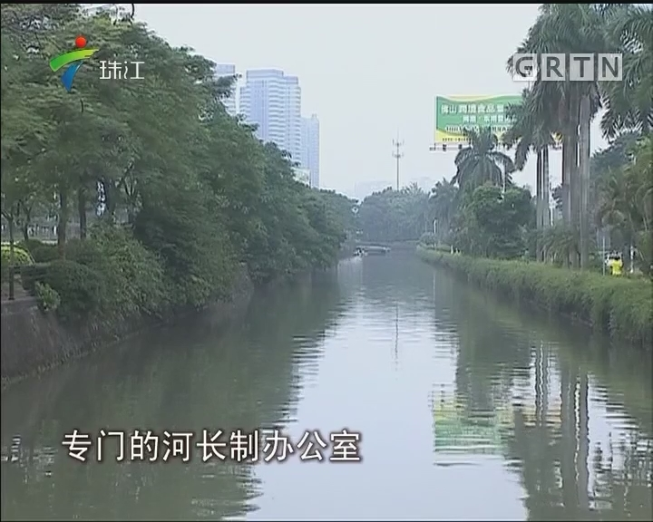 """广东全面推行""""河长制"""" 多地水质有明显改善"""