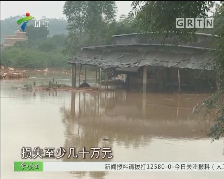 阳春岗美:暴雨引发河水猛涨 两千群众紧急转移