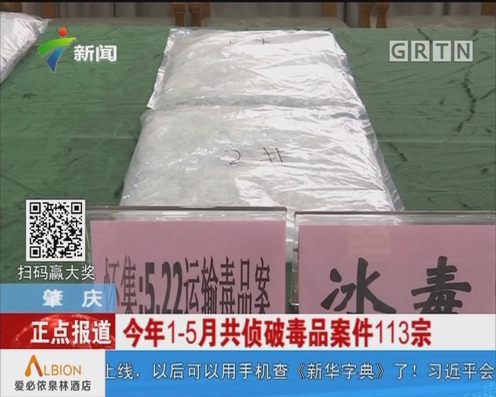 肇庆:今年1—5月共侦破毒品案件113宗