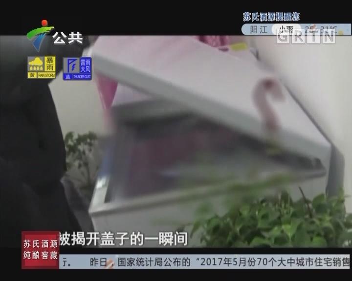 [2017-06-20]天眼追击:雪柜里的少妇