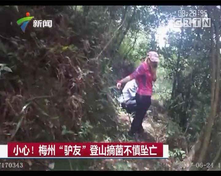 """小心! 梅州""""驴友""""登山摘菌不慎坠亡"""