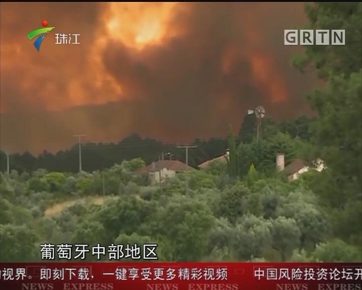 葡萄牙中部森林火灾 已致24人死亡