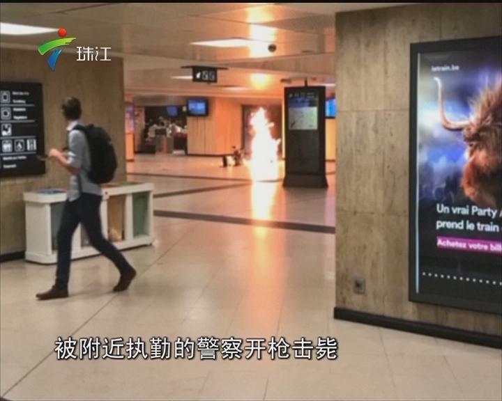 布鲁塞尔中央火车站发生恐怖袭击事件