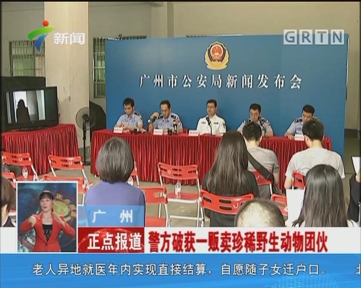 广州:警方破获一贩卖珍稀野生动物团伙