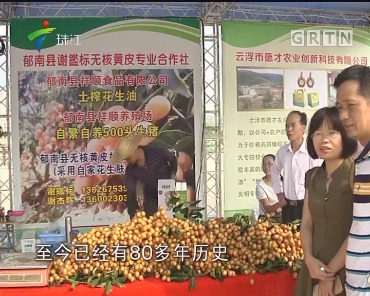 郁南无核黄皮文化节 以果为媒助推农业崛起
