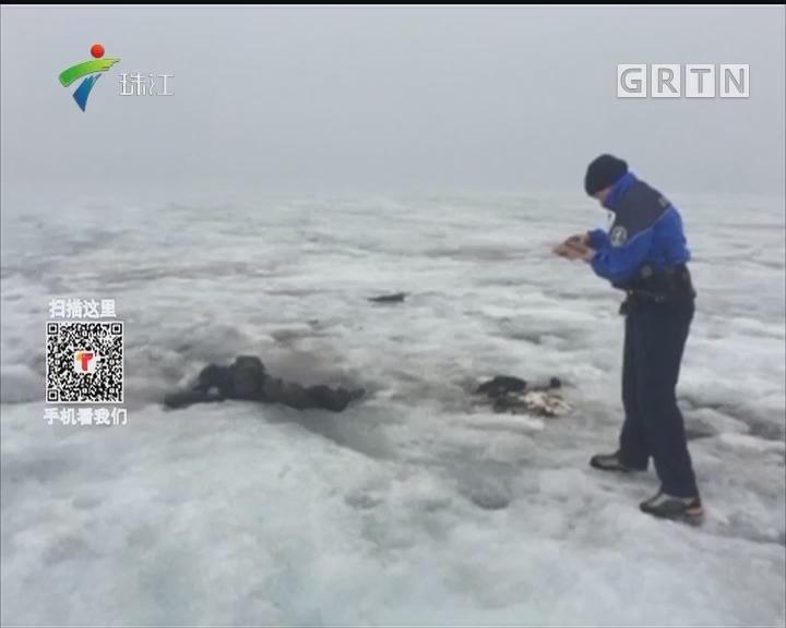 """夫妻""""沉睡""""75年 冰川中发现遗体保存如初"""