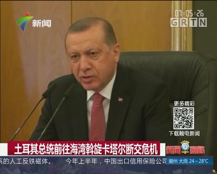 土耳其总统前往海湾斡旋卡塔尔断交危机