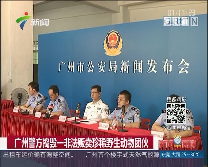 广州警方捣毁一非法贩卖珍稀野生动物团伙