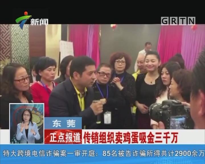 东莞:传销组织卖鸡蛋吸金三千万