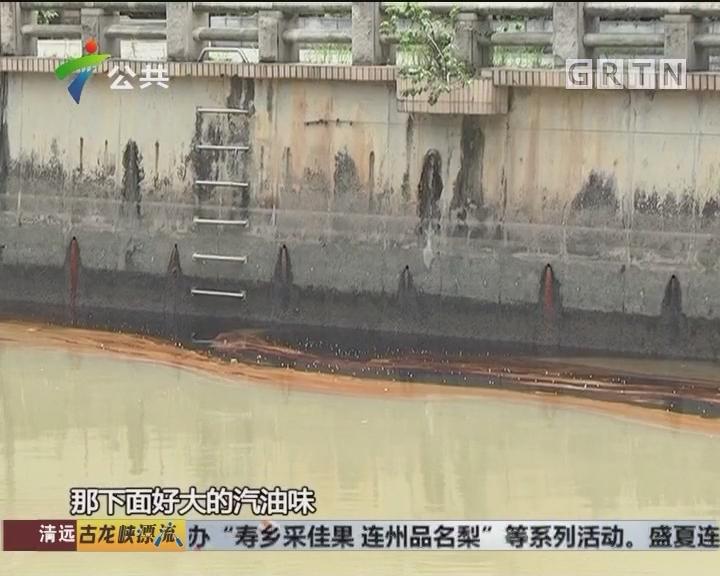 黄埔:乌涌河面漂满油污 环保部门紧急截污