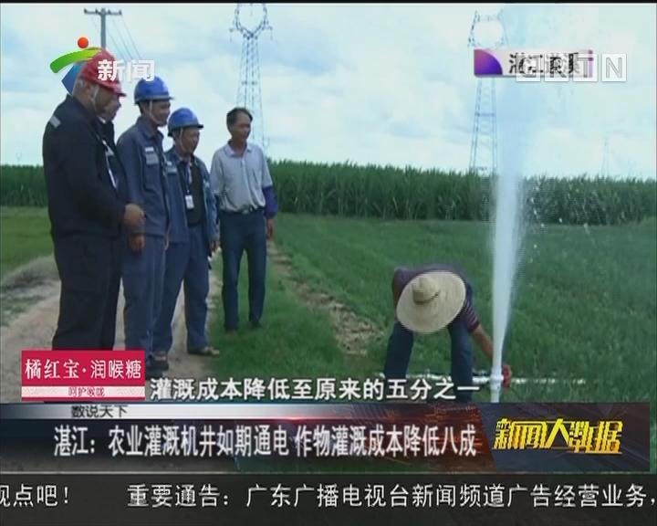 湛江:农业灌溉机井如期通电 作物灌溉成本降低八成