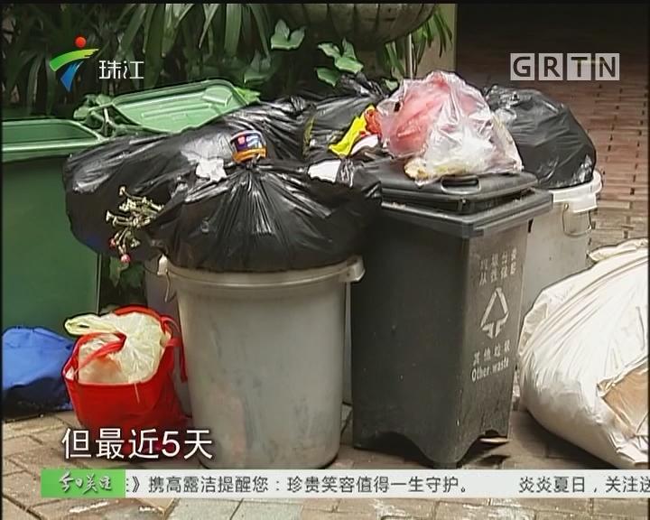广州:小区垃圾五天不清 物管说临时工不熟业务