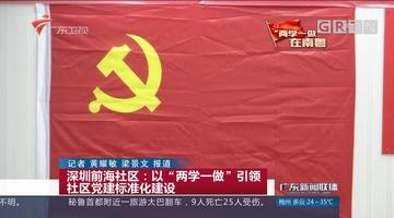 """深圳前海社区:以""""两学一做""""引领社区党建标准化建设"""