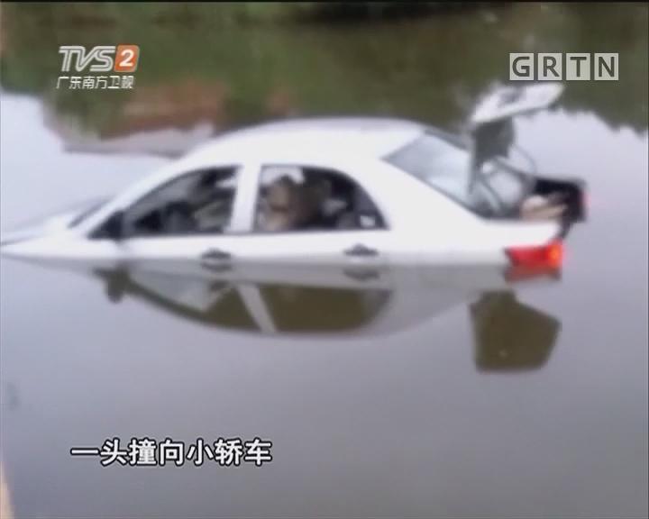"""""""路怒""""发作将车撞进池塘"""
