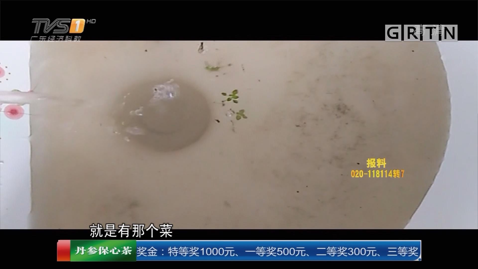 一线调查:汕尾陆河县 为何自来水逢雨天就变黄 还有菜叶?