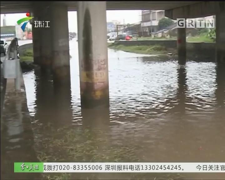 """阳江:降雨致塘围高架桥底成""""水塘"""""""