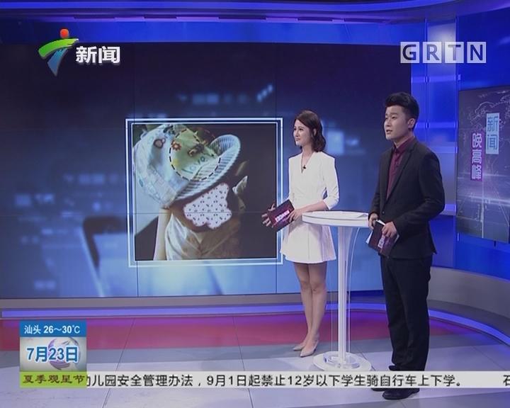 广州白云机场:婴儿携带火柴 竟是为了避邪