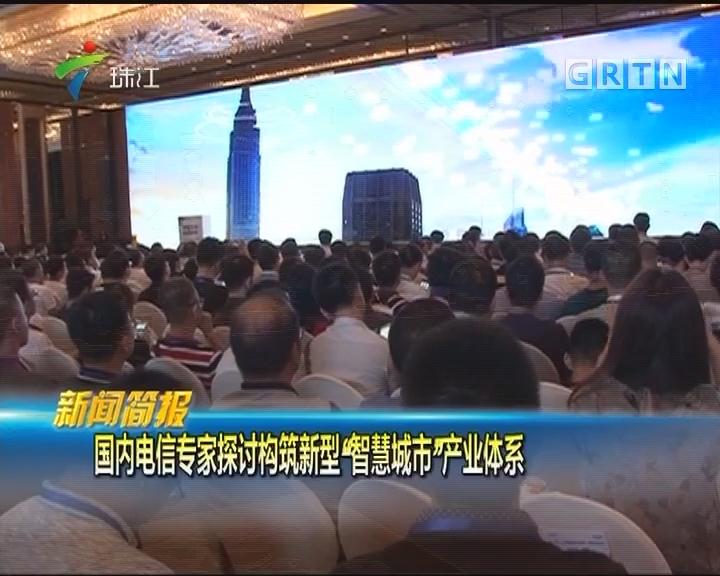 """国内电信专家探讨构筑新型""""智慧城市""""产业体系"""