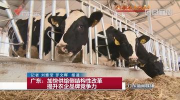 广东:加快供给侧结构性改革 提升农企品牌竞争力