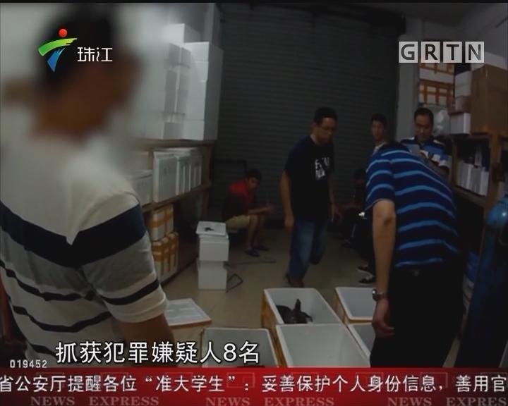穗警方捣毁一非法贩卖珍稀野生动物团伙