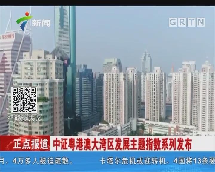 中证粤港大湾区发展主题指数系列发布