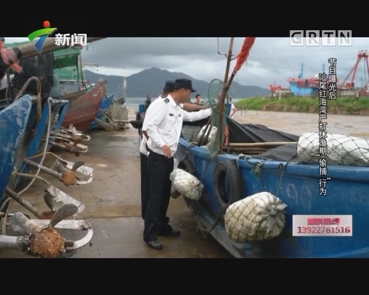 """[2017-07-12]社会纵横:节目曝光后 汕尾红海湾严打休渔期""""偷捕""""行为"""
