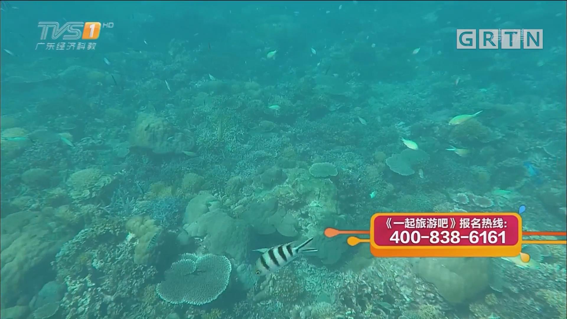 马来西亚·沙巴——海豚岛