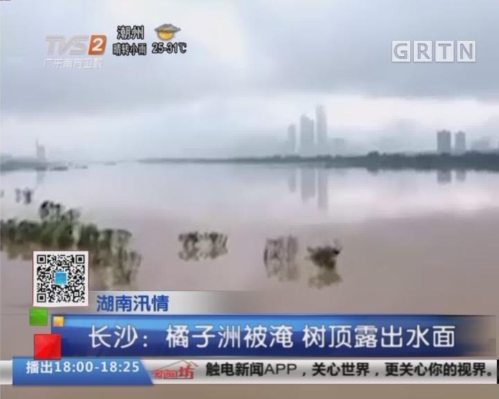 湖南汛情 长沙:橘子洲被淹 树顶露出水面