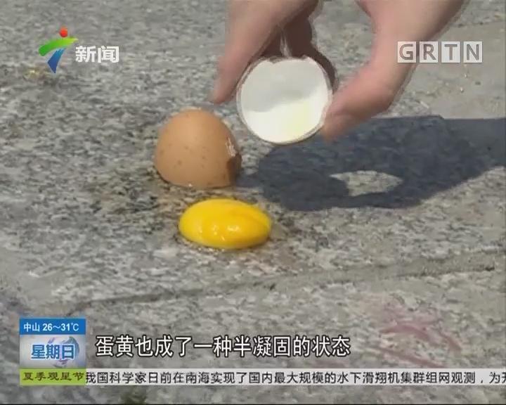 高峰实验室:马路上煎蛋能熟吗? 在马路上煎鸡蛋 能熟吗?