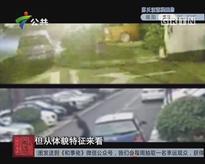 [2017-07-29]天眼追击:小区内的高空窃贼