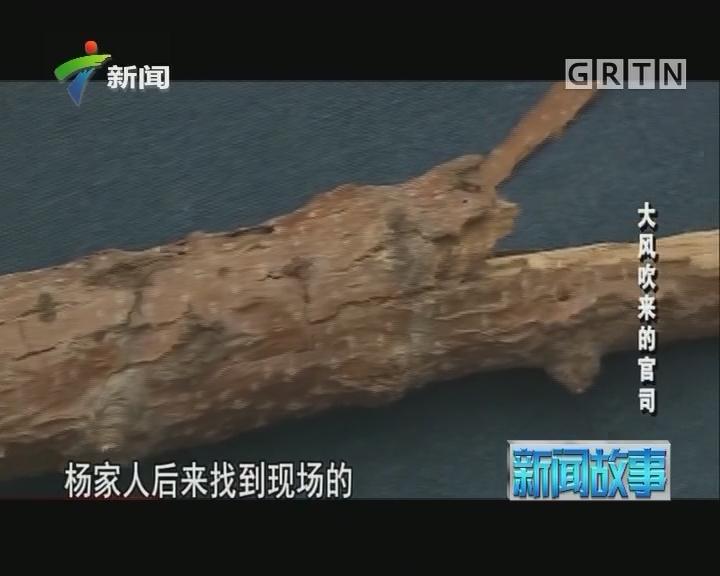 [2017-08-07]新闻故事:大风吹来的官司