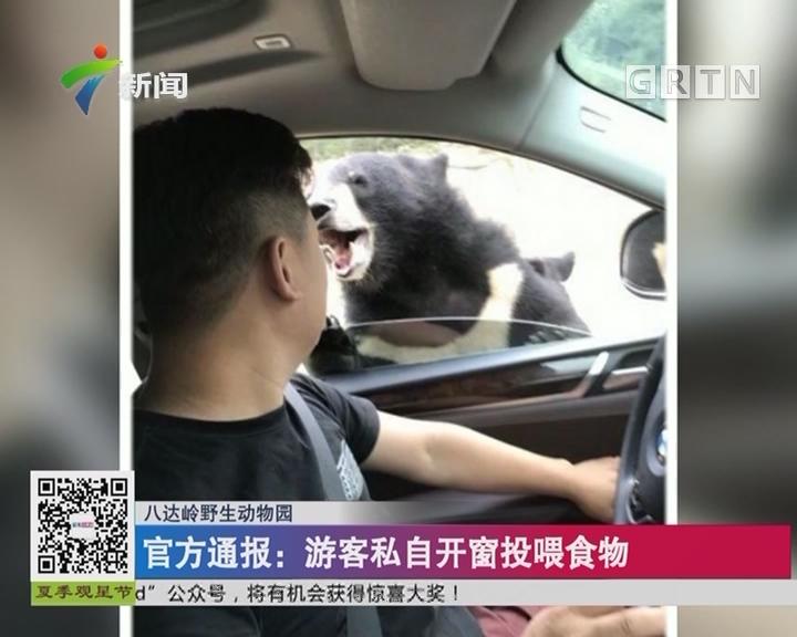 八达岭野生动物园:游客开窗投食 被黑熊咬伤