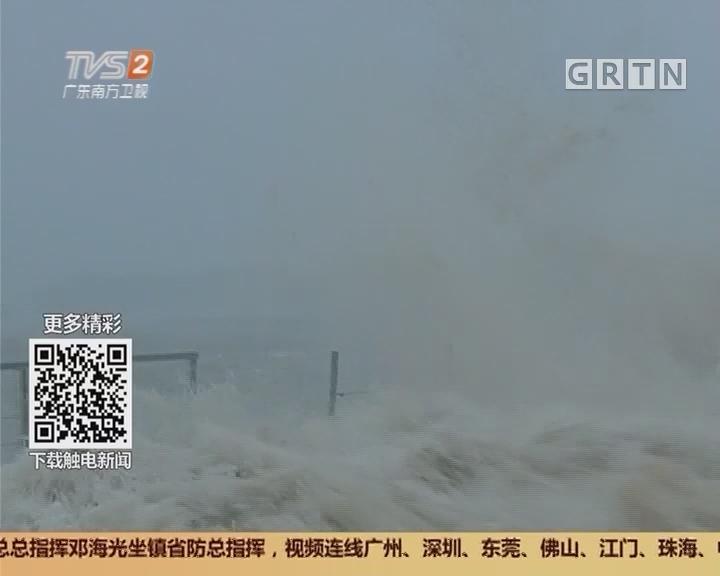 """直击台风""""天鸽"""" 惠东:海浪波涛汹涌"""