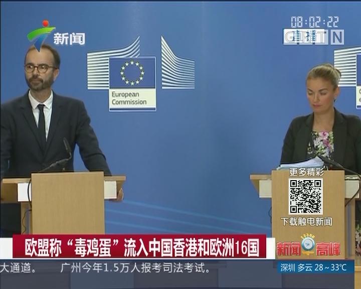 """欧盟称""""毒鸡蛋""""流入中国香港和欧洲16国"""
