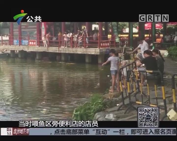珠海:女童捞鱼掉入湖中 两少年联手救援