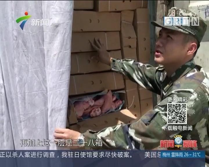 广东海警:查获走私冻品700余吨 案值约3500万元