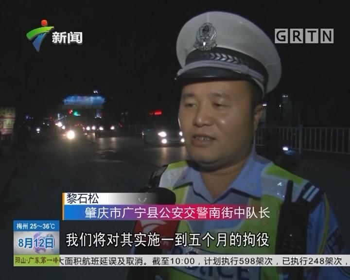 肇庆:周末查酒驾 三小时竟抓二十二只醉猫