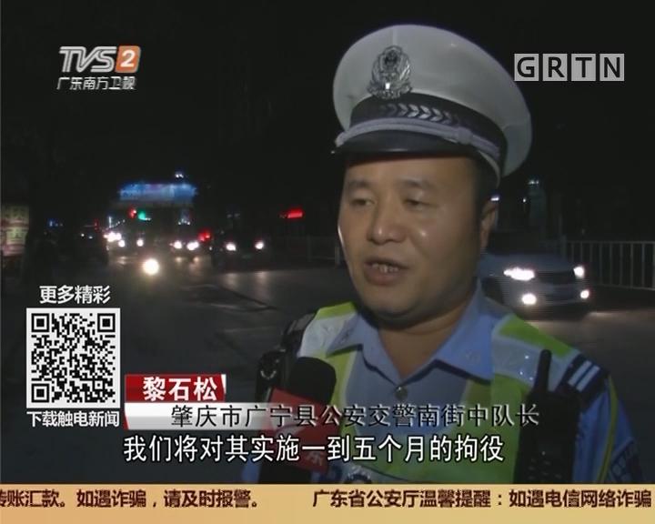 肇庆:周末查酒驾 三小时抓22只醉猫