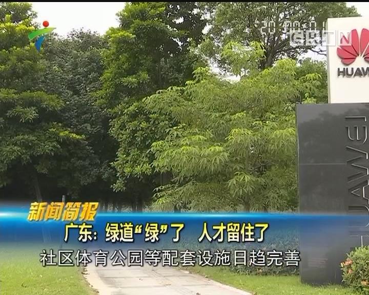 """广东:绿道""""绿""""了 人才留住了"""