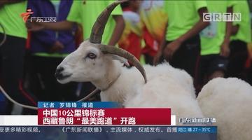 """中国10公里锦标赛 西藏鲁朗""""最美跑道""""开跑"""