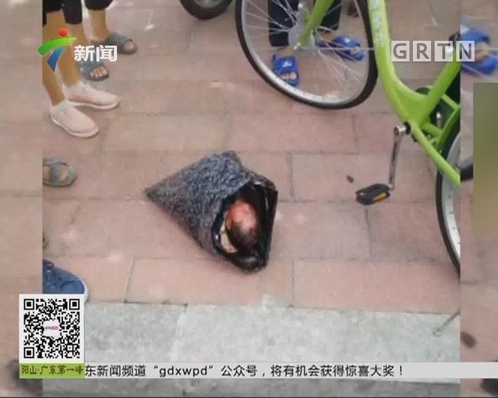 """福州:新生儿成""""人肉快递"""" 幸被及时发现"""