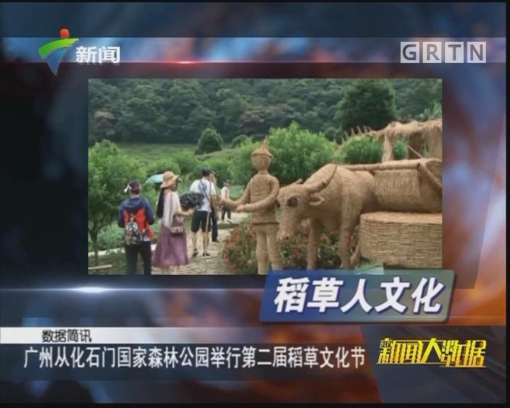 广州从化石门国家森林公园举行第二届稻草文化节