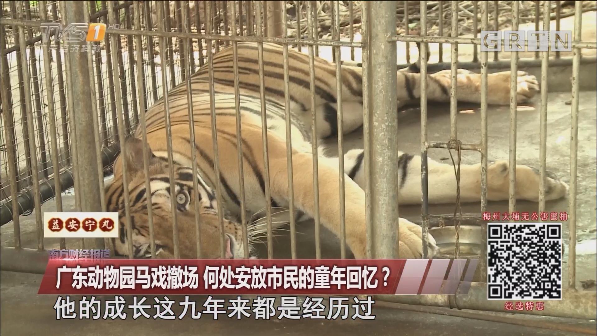 广东动物园马戏撤场 何处安放市民的童年回忆?