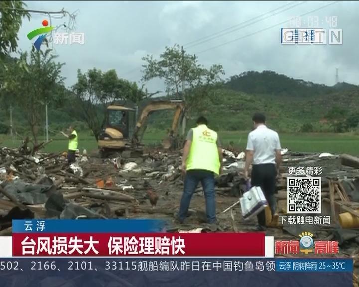 云浮:台风损失大 保险理赔快