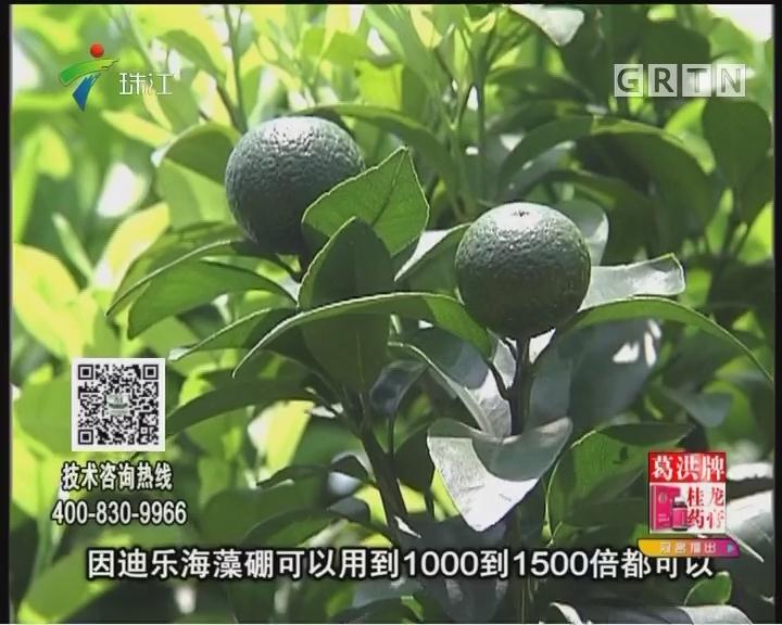 [2017-08-28]摇钱树