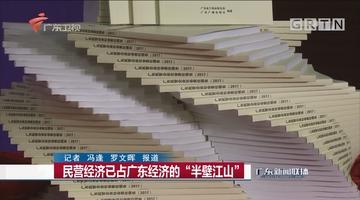 """民营经济已占广东经济的""""半壁江山"""""""